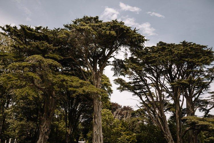 018 inish beg estate wedding ireland photographer alternative dstination