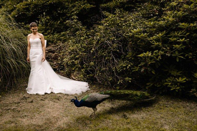128 summer outdoor wedding at marlfield house wedding photographer